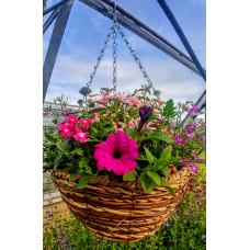 Hanging Basket Mixed